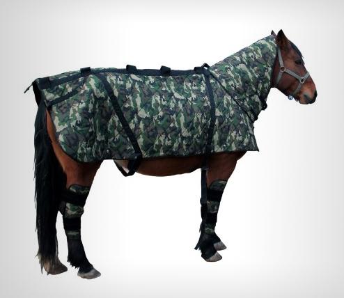 magneetveldtherapie-paarden