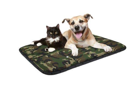 magneetveldtherapie-honden-katten-huisdieren