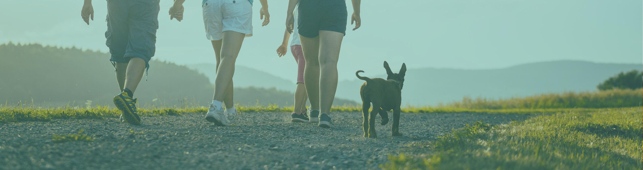 wandelen met hond