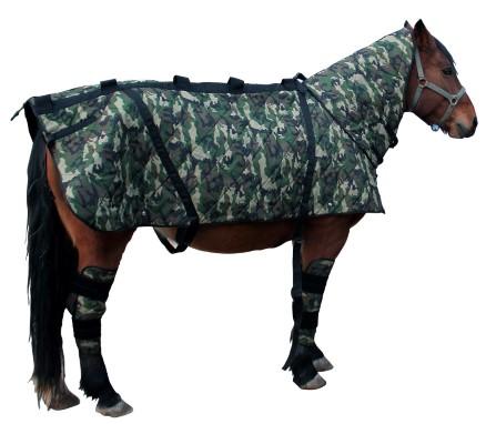 magneetveldtherapie paarden en huisdieren